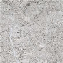 Arctic Silver Limestone