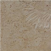Calypso Coral Stone