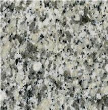 Luna Pearl Granite