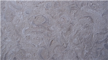 Fossil Beige Limestone Tiles, Slabs