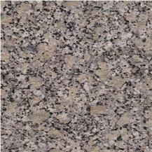 Golden Autumn Granite