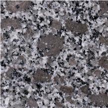 Violet Tan Dan Granite