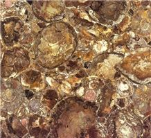 Brown Petrified Wood-Semiprecious Stones