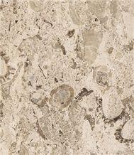Aurisina Fiorita Lumachella Marble
