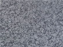 Gris Perla Granite Slabs & Tiles, Spain Grey Granite