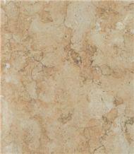 Jerusalem Shelly Limestone Slabs & Tiles, Palestine Beige Limestone