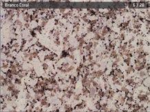 Branco Coral Granite Slabs & Tiles, Portugal Grey Granite