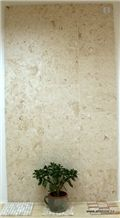 Jerusalem Fossil Limestone Tiles