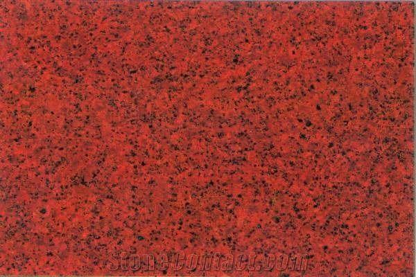 Lakha Red Granite Slabs Tiles India Red Granite 58346