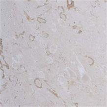 Fossil Limestone Tiles, Slabs