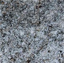 Beola Grigia Quartzite Slabs & Tiles, Italy Grey Quartzite