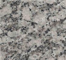 Gris Perla Crema Granite Slabs & Tiles, Spain Beige Granite