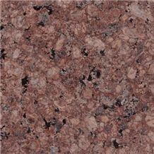 Maree Gold Granite Tiles & Slabs, Merry Gold Granite Tiles & Slabs