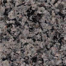Nagina Green Granite Slabs & Tiles, India Green Granite