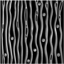 Backsplash Wall Tile, Art Tile Backsplash