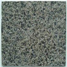 China Green Granite Slabs & Tiles