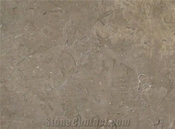 Milly Gray Marble Slabs Tiles Egypt Grey Marble