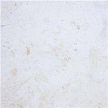 Palestinian Light Cream Limestone