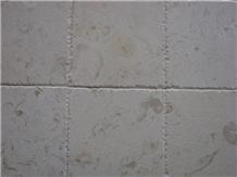 Mystic Beige Fossil Limestone