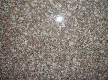 Granite Slab G664
