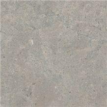 Mali I Thate, Albania Grey Limestone Slabs & Tiles