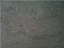 Beige Seashell Coral Limestone Honed Slabs,Machine Cutting Tile Panel for Bathroom Wall Cladding,Hotel Lobby Floor Covering