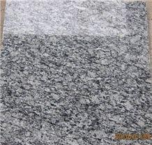 G568 Granite, Surf White