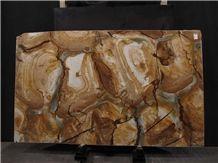Palomino,Stone Wood Quartzite Slab