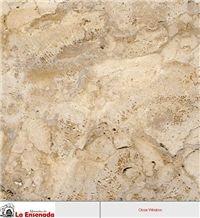 Coralina Gold Coral Stone Tiles
