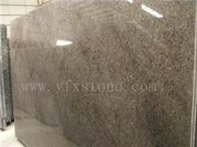 YFX-Labrador Antico Pearl