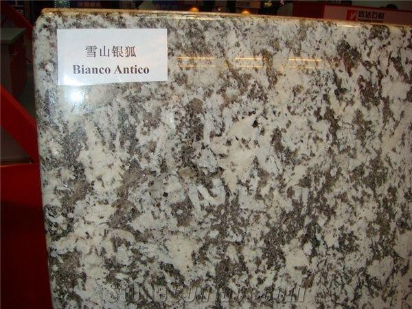 Bianco Antico Granite Countertop From China 93559