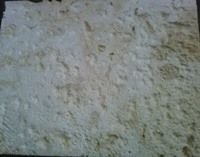 Coral Stone Brushed, Dominican Republic Beige Marble Slabs & Tiles
