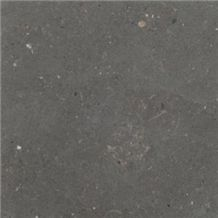 San Vicente Limestone-Moon Grey Slabs & Tiles