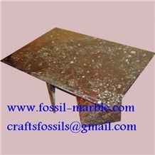 Fossil Brown Limestone Table