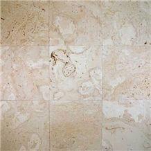 Coralina Shellstone Limestone Tile, Mexico Beige Limestone