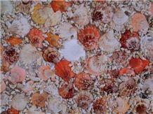 Shell Precious Stone