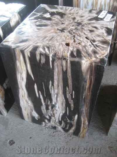 Cool Petrified Wood Stools Square From Indonesia 122533 Gmtry Best Dining Table And Chair Ideas Images Gmtryco