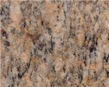 Santa Cecilia Granite Slab, Brazil Yellow Granite