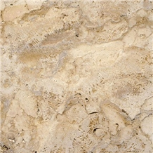 Coralina Gold Coral Stone Tiles