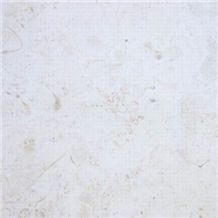 /products-123572/dominican-white-coral-stone-tiles