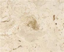 Mexican Shell Stone Limestone Slabs & Tiles