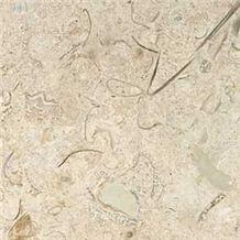 Sisal Shellstone Limestone Tile, Mexico Beige Limestone