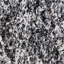 Serizzo Antigorio Passo Granite Tile, Italy Grey Granite