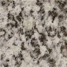 Serizzo Formazza Chiaro Granite Slabs & Tiles