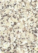 Gris Perla Crema Granite Tile,Spain Beige Granite