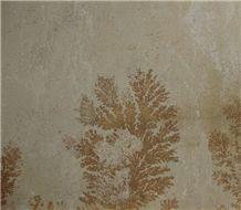 Fossil Mint Sandstone Tile,India Beige Sandstone