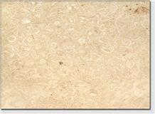 Mexico Conchuela Coral Stone Tiles