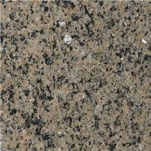 Sahara Brown Granite Slabs & Tiles