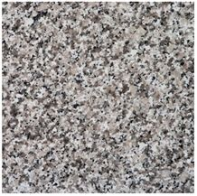 Bianco Perla Fiorito, Perla Avorio Sardo Granite Slabs