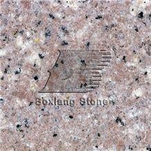 Quanzhou White Chinese Granite